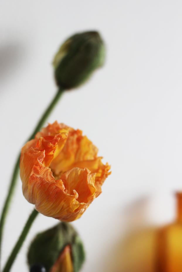 ©La mariee aux pieds nus - Un livre d or avec des post it - Pepper and Joy 3