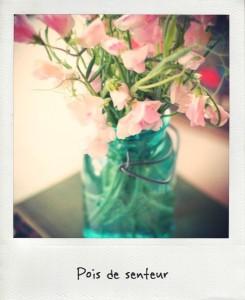 Les Fleurs Du Mois D Aout