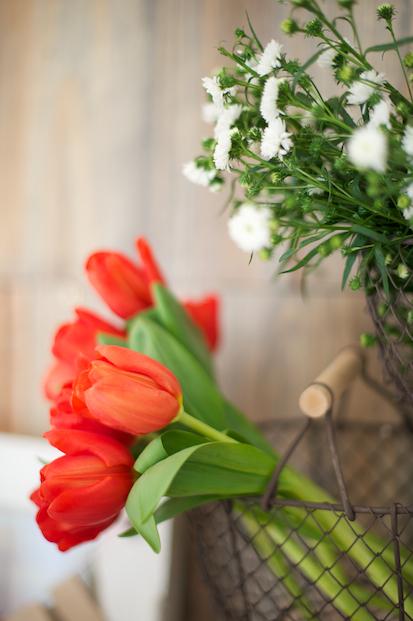 ©Lovely Pics / pique nique en vichy rouge