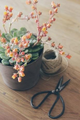 La mariee aux pieds nus - DiY comment faire une boutonniere pour homme - fleurs - 5