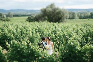 Greg Finck - Un mariage en bleu en Provence - Mas de So - La mariee aux pieds nus-61