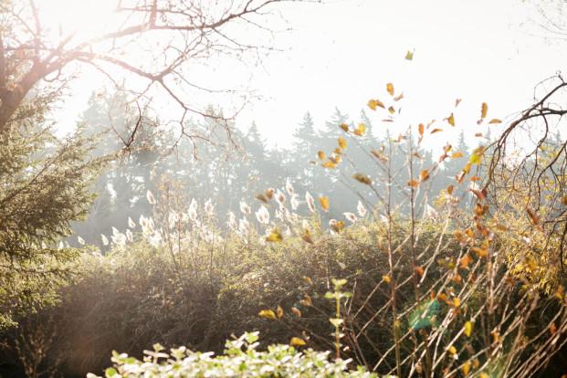 Studio A+Q - Un mariage en hiver - Inspiration - Domaine de Blanche Fleur - La mariee aux pieds nus