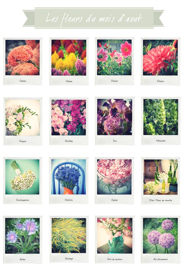 calendrier-des-fleurs-le-mois-d-aout-la-mariee-aux-pieds-nus - la