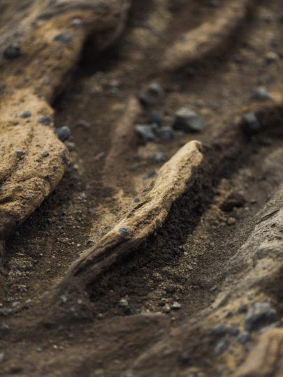 Capyture - Voyage en Islande - La mariée aux pieds nus