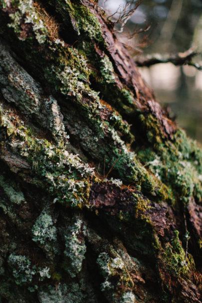 Alain M - Une séance engagement nature à Glencoe en Ecosse - La mariée aux pieds nus
