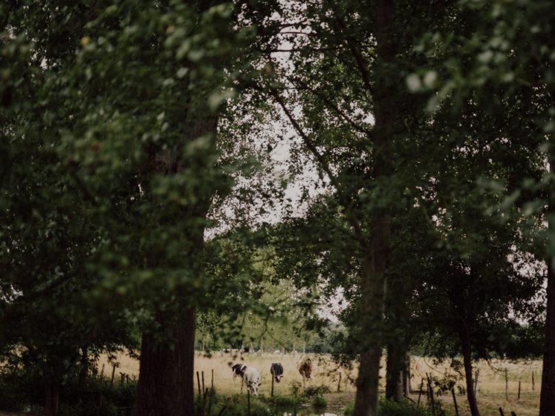 Un mariage simple et champêtre en Anjou à découvrir sur le blog mariage www.lamarieeauxpiedsnus.com - Photos : Capyture