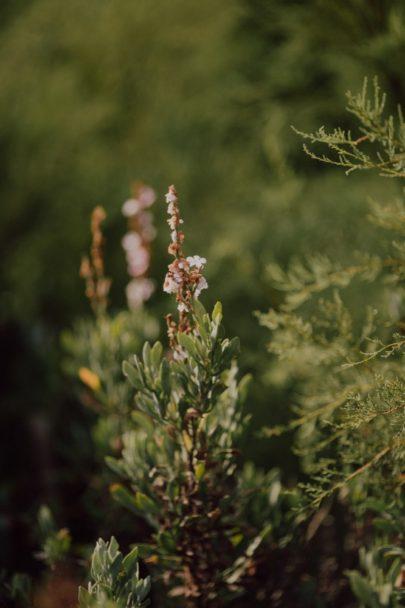 Une séance engagement à Porquerolles - La mariée aux pieds nus - Photos : Capyture